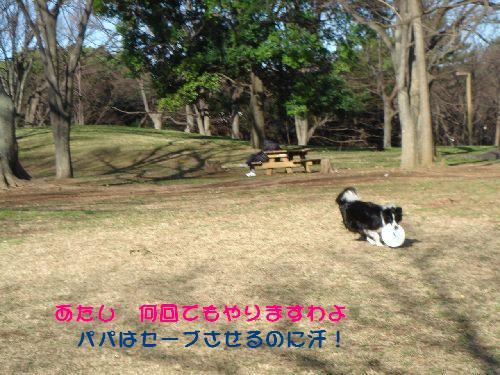 b0101991_1317429.jpg