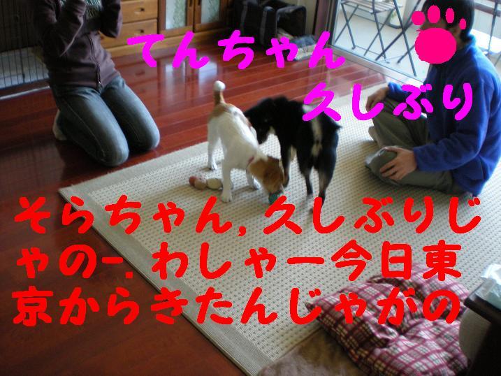 c0188294_22451634.jpg