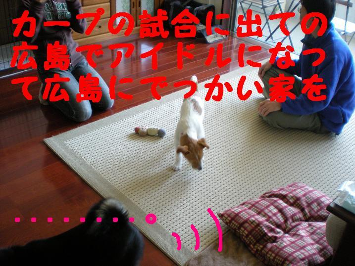 c0188294_22453786.jpg