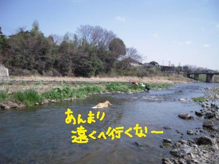 f0176830_17195343.jpg