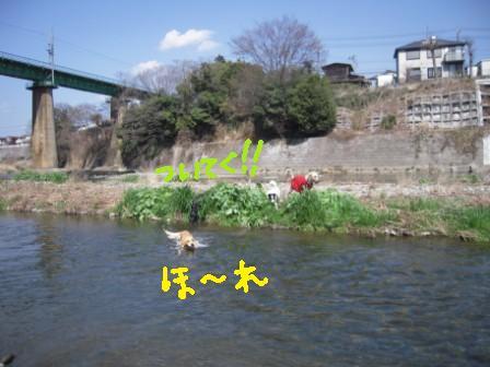 f0176830_17202536.jpg