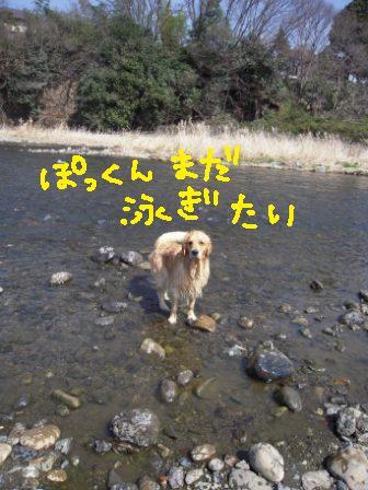 f0176830_17285394.jpg