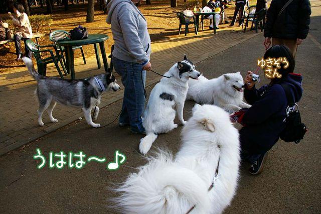 ゴキゲンおっきな公園_c0062832_1730583.jpg