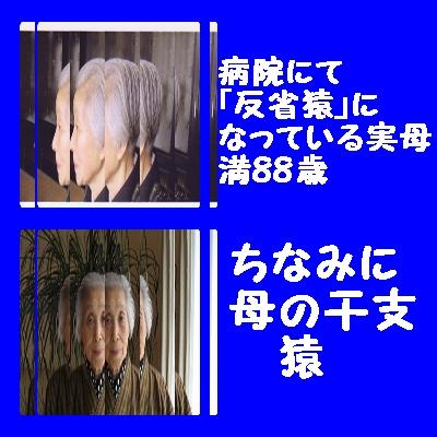 f0175279_115866.jpg