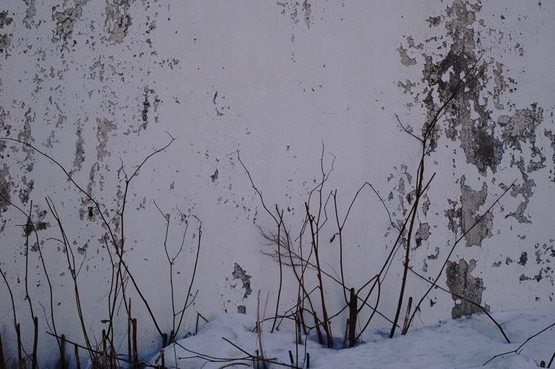 白い壁_f0042194_19512045.jpg