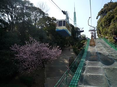 宇和島-卯之町-松山 旅行記_e0174913_1056355.jpg