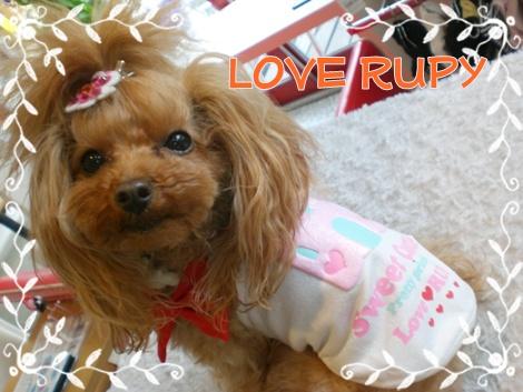 RUPY rupy  るぴぃ  ルピィ_b0084929_12223828.jpg