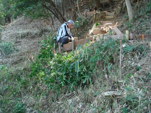 うみべの森での一人作業_c0108460_16175077.jpg