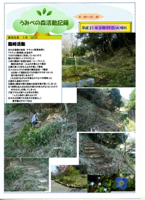 うみべの森での一人作業_c0108460_16223479.jpg