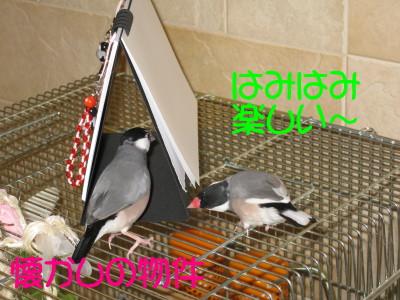 b0158061_2256645.jpg