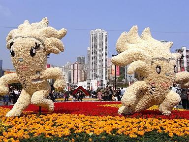 香港花卉展覧2009~HONGKONG FLOWER SHOW~_e0155771_20382694.jpg