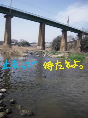 f0176830_19111785.jpg