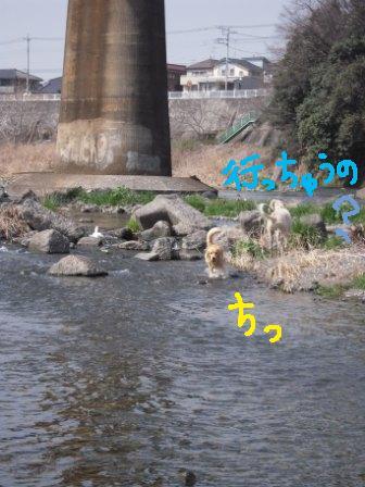 f0176830_19115961.jpg