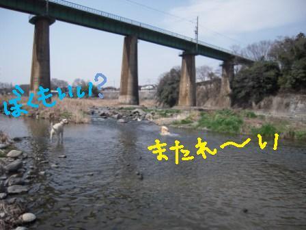 f0176830_1911814.jpg
