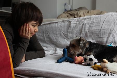 サル子とバブーの基地遊び_c0024345_10564734.jpg