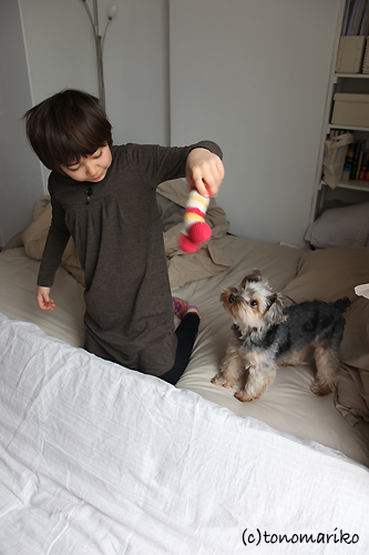 サル子とバブーの基地遊び_c0024345_1056984.jpg