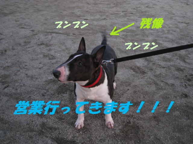 f0180994_2214426.jpg