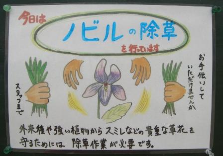 草ぬきお手伝い募集_b0049307_21352120.jpg