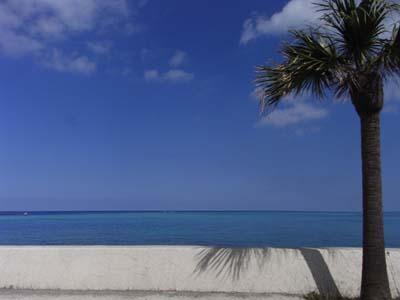 沖縄へ_e0130607_22284778.jpg