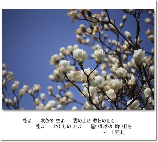 b0066947_19253346.jpg