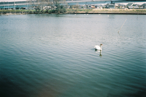 f0182883_193351.jpg