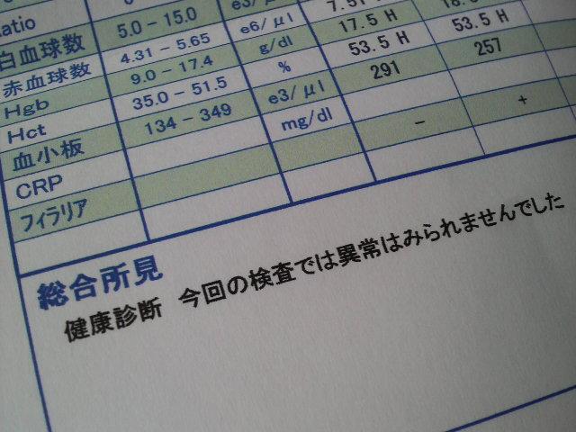 f0090009_13575036.jpg