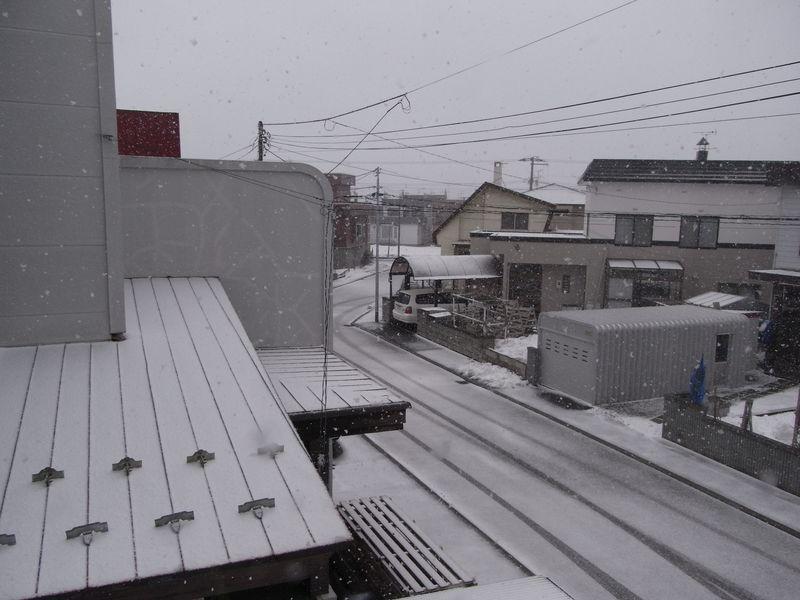 春分の日 【午後の雪】_c0025115_1527386.jpg