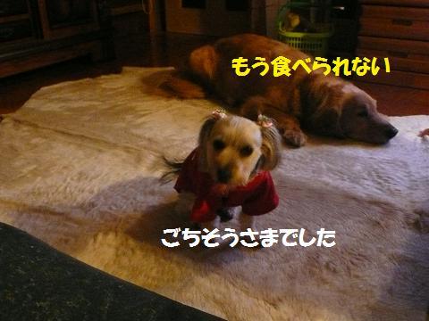 f0114128_20585857.jpg