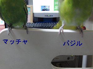 f0196665_23414451.jpg