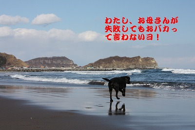 f0146769_23582765.jpg