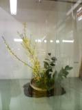 b0055385_16133888.jpg