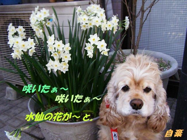 b0067012_0543087.jpg