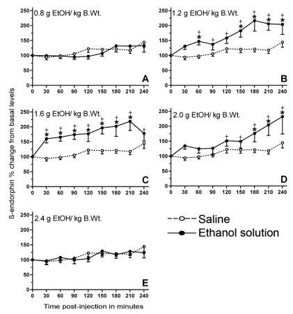 適度な量のアルコールは脳内エンドルフィンを放出させる_c0025115_17212815.jpg