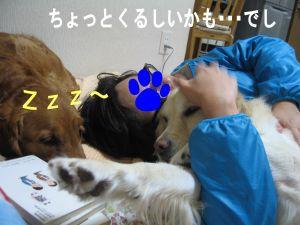 b0008217_2215090.jpg