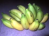 いろんなバナナ_a0043520_075991.jpg