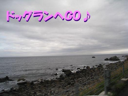 f0084422_20284915.jpg