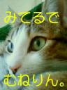 c0052756_20122334.jpg