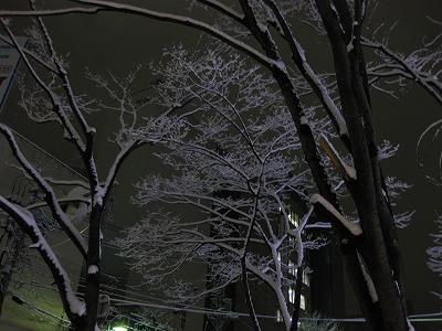 凍える街_c0190960_6352788.jpg