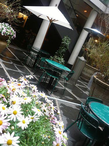 「ピカソとクレーの生きた時代」渋谷東急文化村  ピカソとクレー 雨あがる 。。。* *。:☆.。☆_a0053662_10323788.jpg