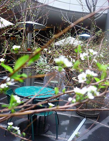 「ピカソとクレーの生きた時代」渋谷東急文化村  ピカソとクレー 雨あがる 。。。* *。:☆.。☆_a0053662_1035453.jpg