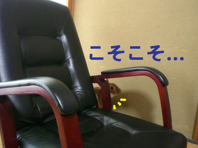 d0134977_23125811.jpg