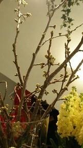 春のお彼岸_e0130779_1525334.jpg