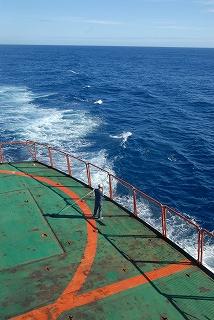 船上生活3_e0064783_172853100.jpg