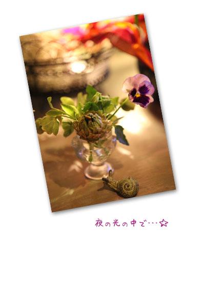 f0127388_1138495.jpg