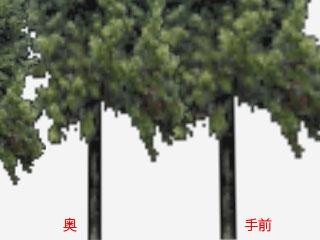 c0178014_025521.jpg