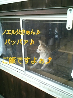 連休_f0148927_172701.jpg