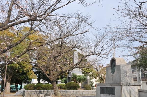 桜。_b0028732_0225362.jpg