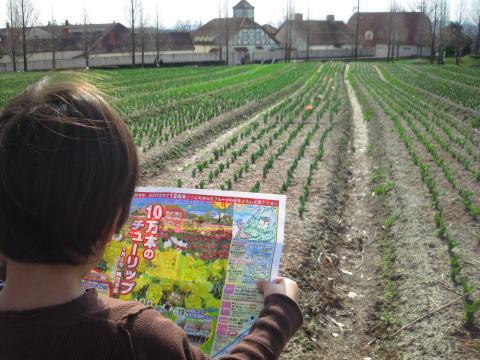 滋賀農業公園ブルーメの丘_c0113733_3133552.jpg