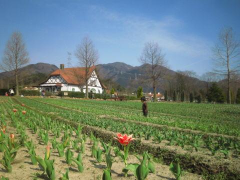 滋賀農業公園ブルーメの丘_c0113733_314397.jpg