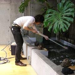 池掃除_b0161661_20265310.jpg
